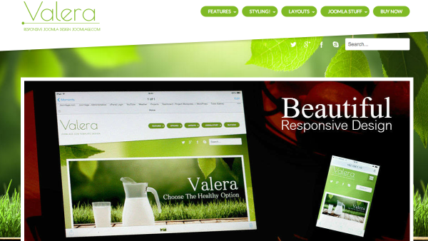 Best Free joomla Templates of 2014  - valeraj3